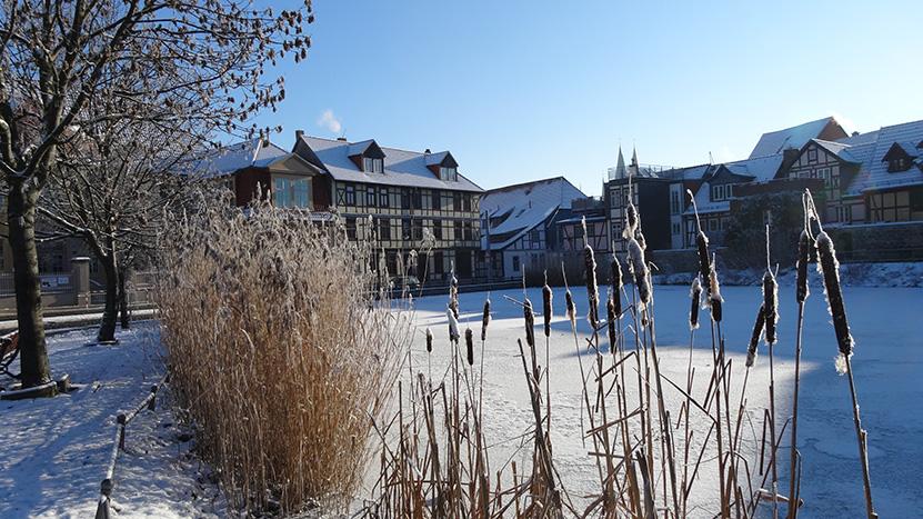 gefrorene Idylle am Torteich Halberstadt ©by hoschkat