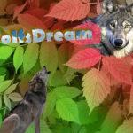 Wolfsdream Wolfstraum Natur